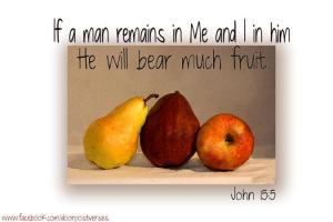 Bear Much Fruit used with permission Doorpost Verse on facebook
