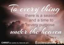 seasons ~ christian poetry by deborah ann