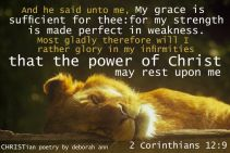we all have bouts ~ christian poetry by deborah ann