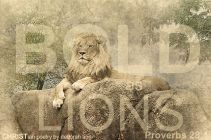 Bold As Lions ~ CHRISTian poetry by deborah ann belka