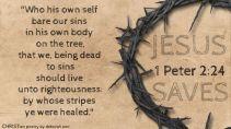 TGIGF ~ CHRISTian poetry by deborah ann belka