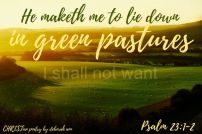 Life In The Pasture ~ CHRISTian poetry by deborah ann ~ free to use