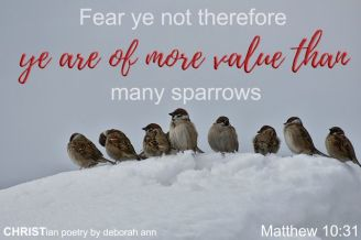 God of The Sparrow ~ CHRISTian poetry by deborah ann free to use