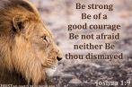 Lord, Give Me A Backbone ~ CHRISTian poetry by deborah ann belka ~ free to use