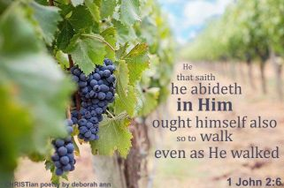 Abiding ~ CHRISTian poetry by deborah ann free to use