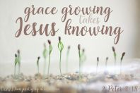 Grace Training ~ CHRISTian poetry by deborah ann free to use