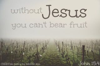 Living On The Vine ~ CHRISTian poetry by deborah ann free to use