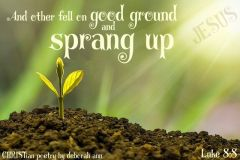 The Good Ground ~ CHRISTian poetry by deborah ann free to use