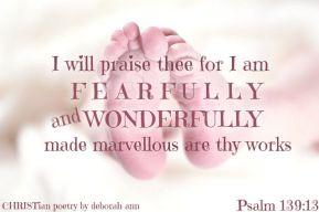 God, My Creator ~ CHRISTian poetry by deborah ann free to use